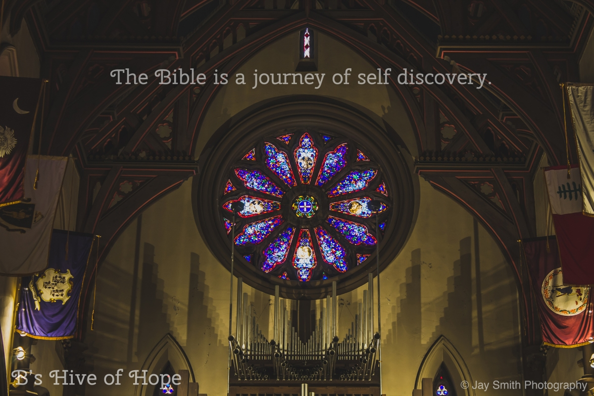 a journey into self discovery essay Self-discovery definition: the process of gaining understanding of oneself and one's motivations and needs | meaning, pronunciation, translations and examples.