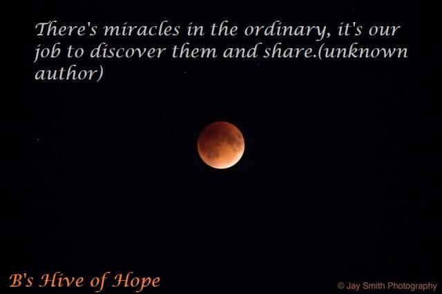 miraclesordinary