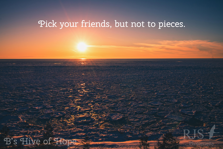 pickYourFriends